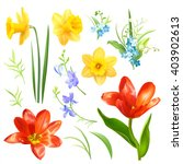 design set with spring flowers. ... | Shutterstock .eps vector #403902613