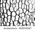 surface closeup grain tree... | Shutterstock .eps vector #403953367
