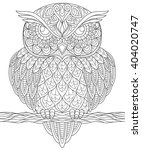 owl. adult antistress coloring... | Shutterstock .eps vector #404020747