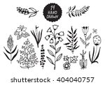 plants and flowers set. vector... | Shutterstock .eps vector #404040757