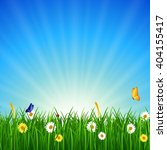 Nature background with green grass, blue sky and bright sun