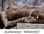 human form mannequin dummy man... | Shutterstock . vector #404264407