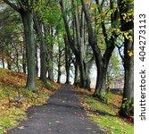 path through a beautiful park... | Shutterstock . vector #404273113