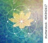 flower of life   the... | Shutterstock .eps vector #404342617