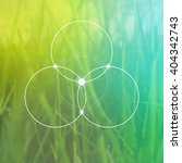 flower of life   the... | Shutterstock .eps vector #404342743