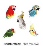 low poly bird. vector low poly  ... | Shutterstock .eps vector #404748763
