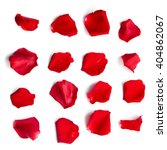 Stock photo set of red rose petals on white background 404862067