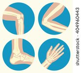 set of human knee  elbow and... | Shutterstock .eps vector #404960443