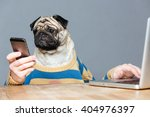 funny man with pug dog head in... | Shutterstock . vector #404976397