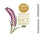 rice berry. vector illustration. | Shutterstock .eps vector #405401647