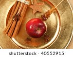 red apple  cinnamon and anise... | Shutterstock . vector #40552915
