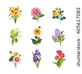 Garden Flowers Hand Drawn...