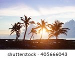 tropical scenic. caribbean palm ... | Shutterstock . vector #405666043