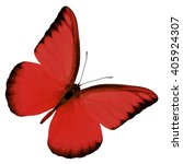 Beautiful Red Butterfly Upper...