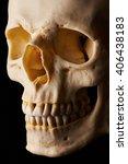 Small photo of Cranial Bone (Short lighting)
