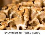 Morel Mushroom As A Background...