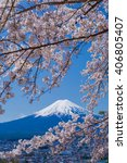 mt.fuji and cherry tree | Shutterstock . vector #406805407