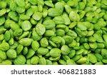 parkia speciosa bean background ... | Shutterstock . vector #406821883
