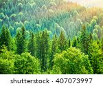 Green Tree Forest Background ...