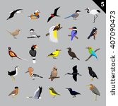 Various Birds Cartoon Vector...