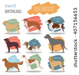 Dog Breeds. Hunting Dog Set...
