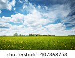 field with yellow dandelions... | Shutterstock . vector #407368753