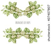 Watercolor Hops. Decorative...