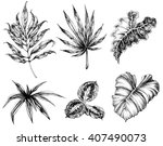 various leaves hand drawing | Shutterstock .eps vector #407490073