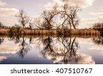 river reflection | Shutterstock . vector #407510767