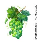 Green Grapes With Leaves On A...