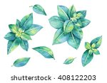 hand drawn watercolor... | Shutterstock . vector #408122203