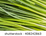 leaves of onion closeup with... | Shutterstock . vector #408242863