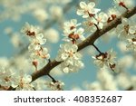 close up view of a spring... | Shutterstock . vector #408352687