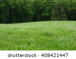 Lawn With Green Grass. Field O...