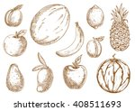 organically grown selected... | Shutterstock .eps vector #408511693