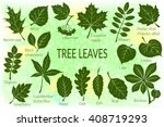 pictograms tree leaves  dogrose ... | Shutterstock .eps vector #408719293