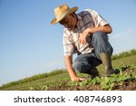 Senior Farmer In A Field...