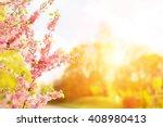 Flowers Pink Cheery  Sakura ...