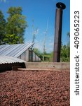 organic cocoa beans sun drying...   Shutterstock . vector #409065223