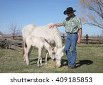 mid adult cowboy with white... | Shutterstock . vector #409185853