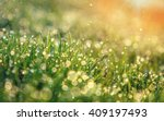 abstract dreamy and blurred... | Shutterstock . vector #409197493