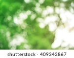 nature abstract bokeh blurred... | Shutterstock . vector #409342867