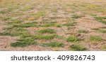 Dried Soil With Some Green Grass