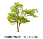 tree isolated on white... | Shutterstock . vector #410110807