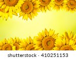 Floral Background Border Of...