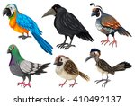 birds collection on white... | Shutterstock .eps vector #410492137
