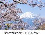 cherry blossoms or sakura and... | Shutterstock . vector #411002473