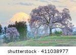 Sunset View Of Giant Wanitsuka...