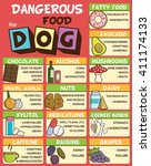 Stock vector infographic poster about food and snacks that are dangerous for your dog and may cause intoxication 411174133