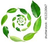 Green Tea Leaves Spiral...